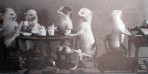 taxidermy cats hold a tea party